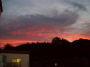 My view early in the morn. Sky was on fire