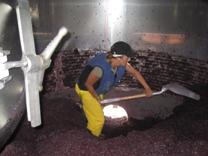 Shoveling Inside the Tank